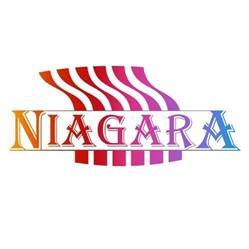 Pralnia Niagara Anna Gryka