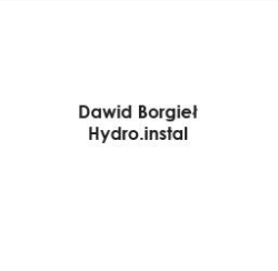Hydro.Instal Dawid Borgieł